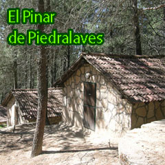 Campamentos Aula Joven: El Pinar de Piedralaves