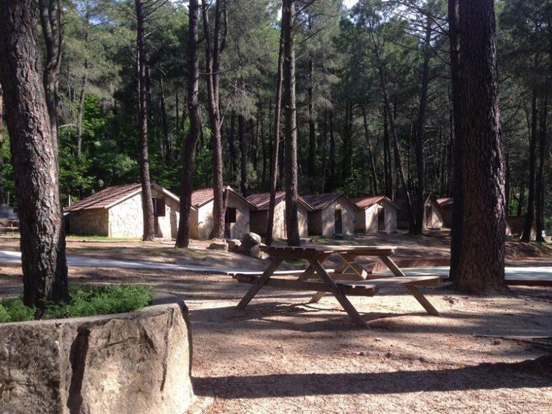 campamento-piedralaves